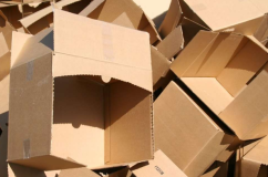 В Тюмени будут собирать б/у гофотару и картон в рамках дня экологии
